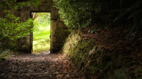 bhthe-narrow-gate